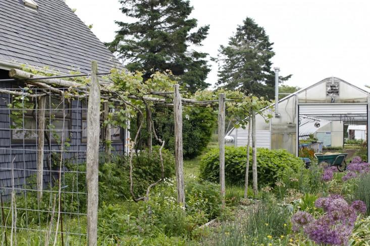 eva's garden MA